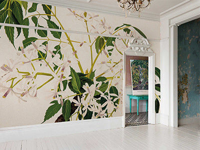 'China Berry [Melia Azedarach]' Wallpaper Mural