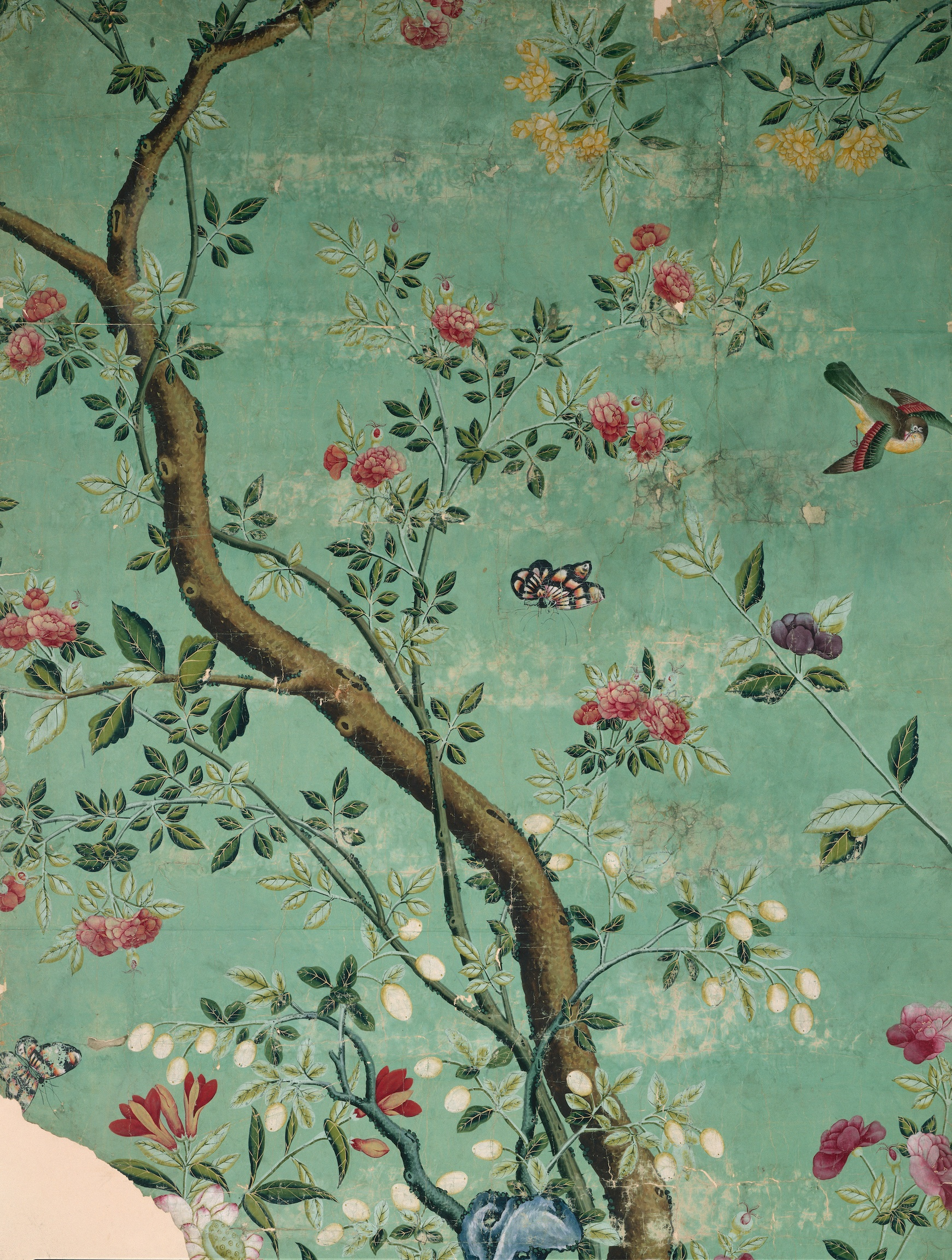 Camellia Chinoiserie Wallpaper Fragment