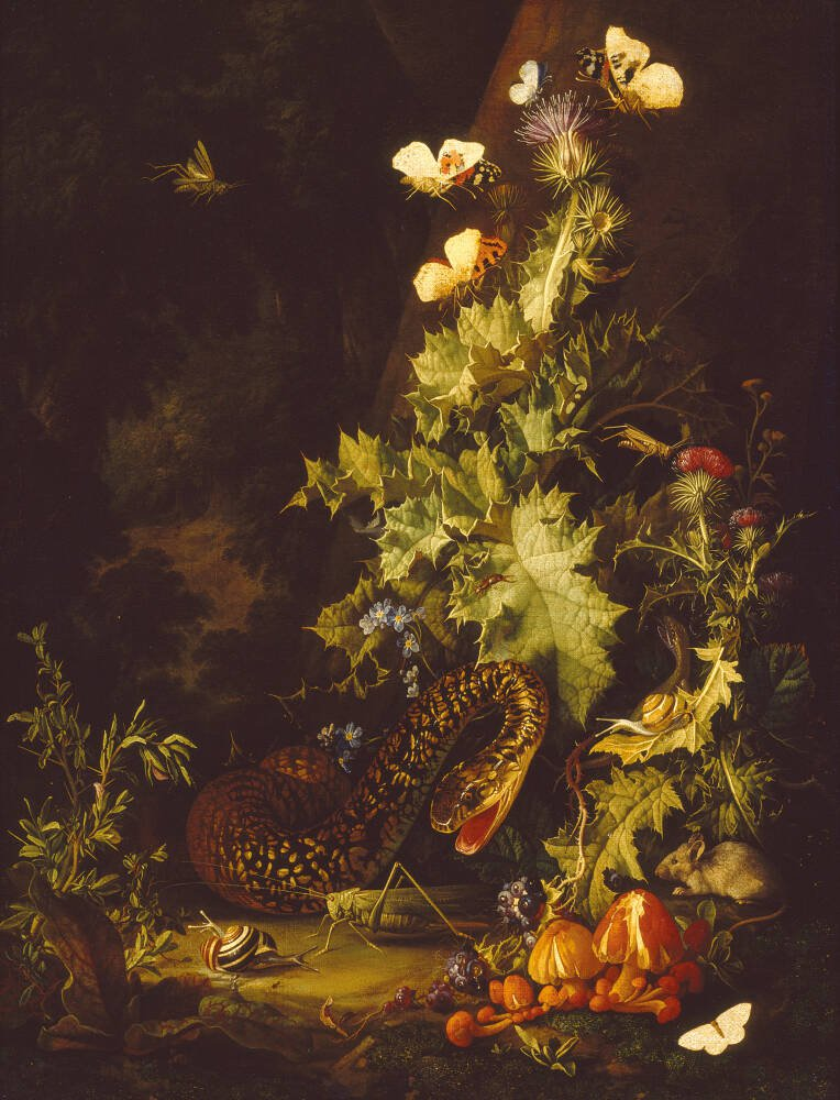 Still Life with a Snake