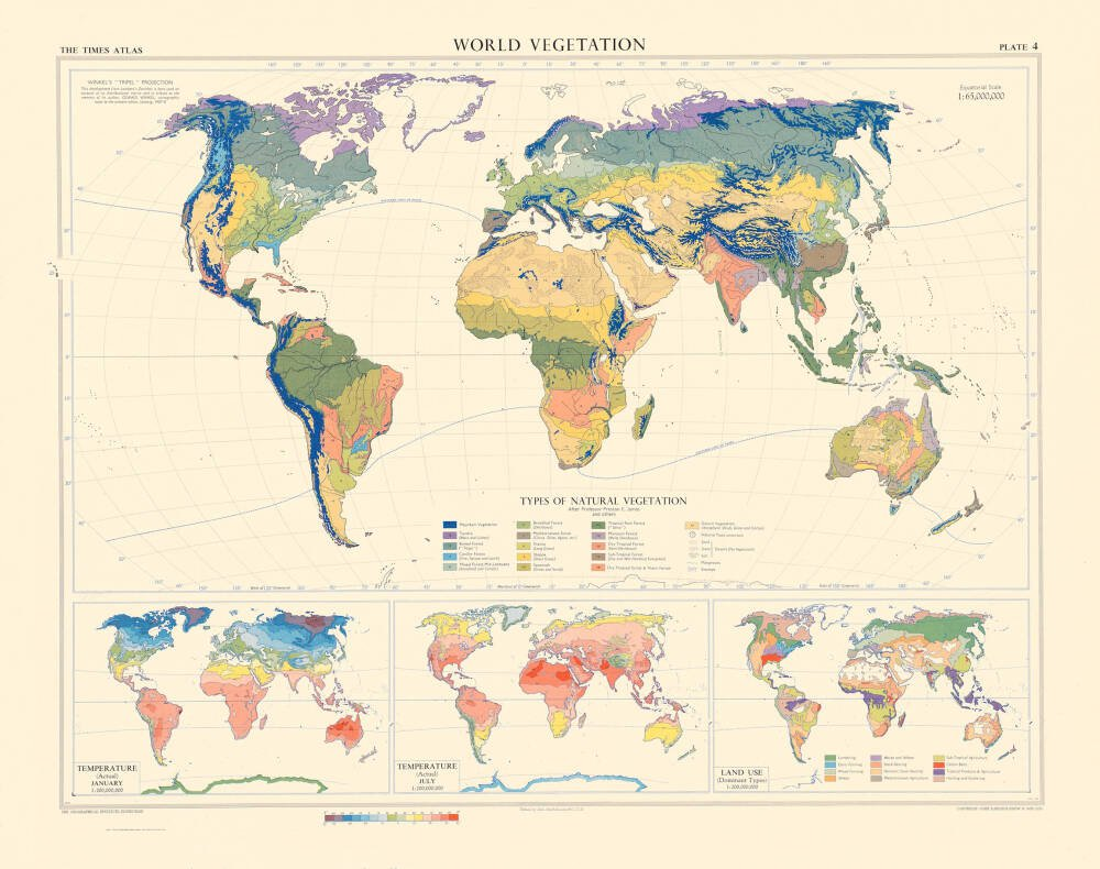 World Vegetation