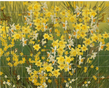 'Welsh Daffodils - Green' Ceramic Tile Mural