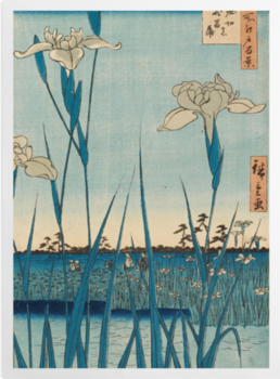 'Horikiri Iris Garden' Art Prints