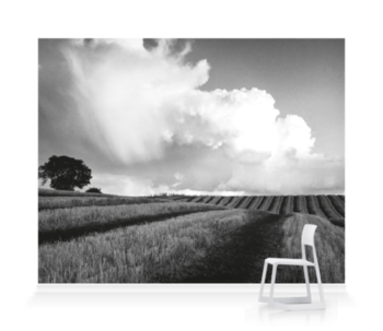 'Large White Cloud near Bilsington' Wallpaper Mural