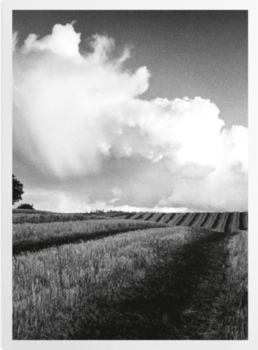 'Large White Cloud near Bilsington' Art Prints