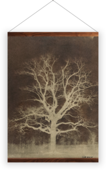 'Oak tree' Wall Hanging