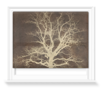 'Oak tree' Roller Blind