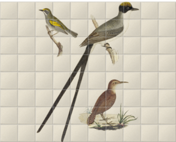 'Flycatcher, Anteater and Warbler' Ceramic Tile Mural
