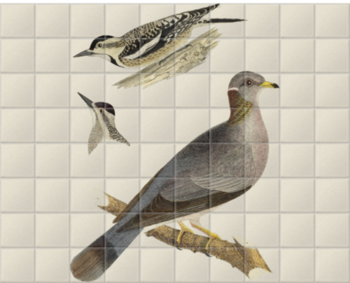 'Woodpeckers and Pigeon' Ceramic Tile Mural