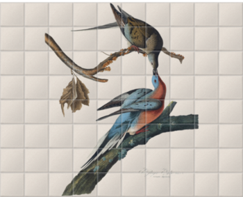 'Male and female Passenger pigeon' Ceramic Tile Mural