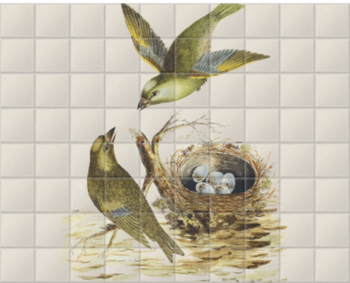 'Two Greenfinches, with their nest full of eggs' Ceramic Tile Mural