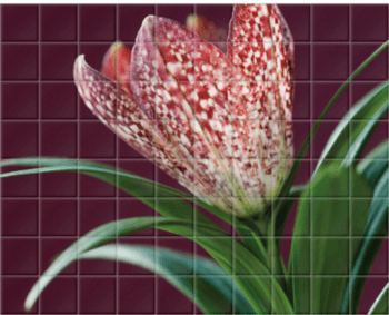 'The Flower of Fritillaria' Ceramic Tile Mural