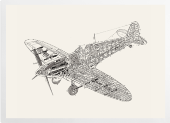 'White Spitfire' Art Prints