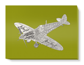 'Olive Green Spitfire' Canvas Wall Art