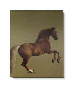 'Whistlejacket' Canvas Wall Art