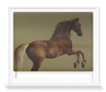 'Whistlejacket' Roller Blind
