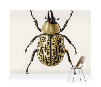 'Scarab Beetle' Wallpaper Mural