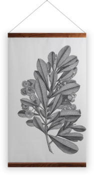 'Sloane Drawing II' Wall Hanging