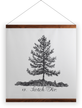 'Scotch Fir' Wall Hanging