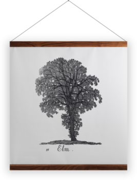 'Elm' Wall Hanging