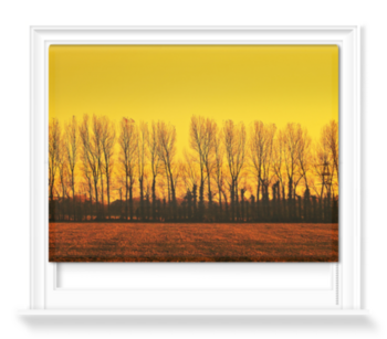 'Golden Landscape' Roller Blind