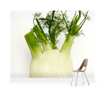 'Fennel on White' Wallpaper Mural