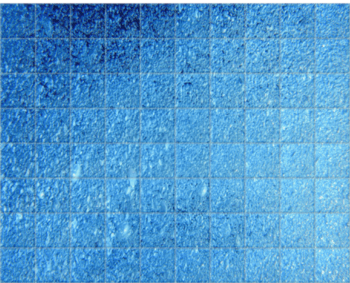 'Pool Bubbles I' Ceramic Tile Mural