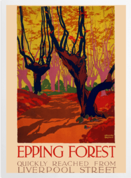 'Epping Forest' Art Prints