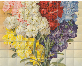 'Dreer's Large Flowering' Ceramic Tile Mural