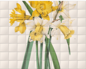 'Narcissus Maximus' Ceramic Tile Mural