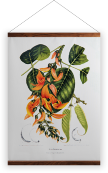 'Flame of the Forest [Butea frondosa]' Wall Hanging