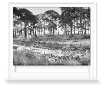 'Forest of Bowland II B&W' Roller Blind