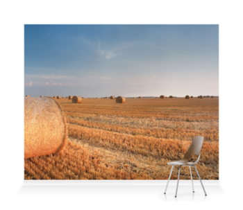 'Round Wheat Bales In Field After Harvesting' Wallpaper Mural