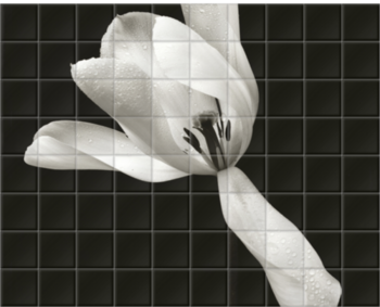 'White Tulip' Ceramic Tile Mural