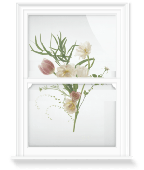 'February Flowers' Decorative Window Film