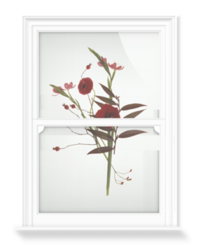 'July Flowers' Decorative Window Film