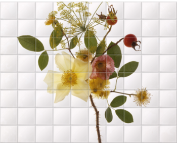 'June Flowers' Ceramic Tile Mural