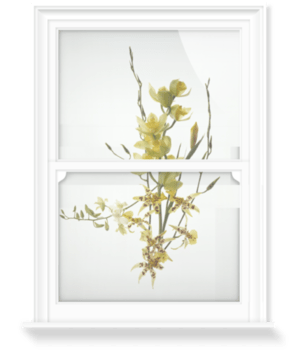 'Orchids I' Decorative Window Film