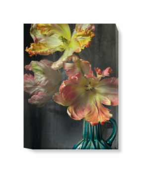 'Bursting Flower Still' Canvas Wall Art