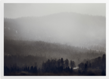 'Rich Fog' Art Prints