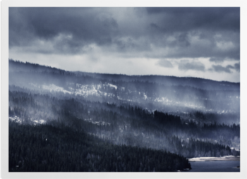 'Winter Forest Fog' Art Prints