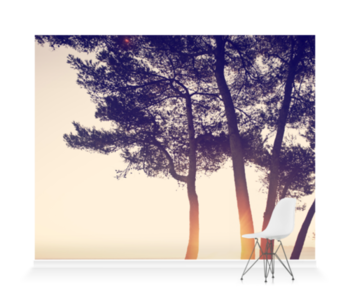 'Trees in Setting Sun' Wallpaper Mural