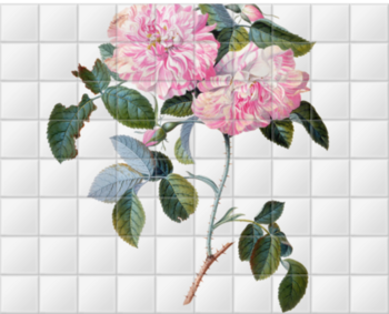 'Striped Monthly Rose' Ceramic Tile Mural