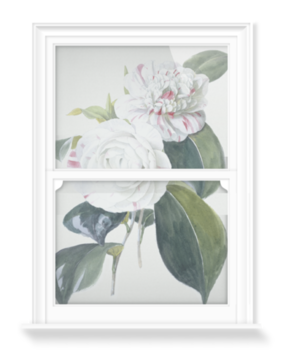 'Camellia' Decorative Window Film