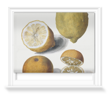 'Orange and Lemons' Roller Blind