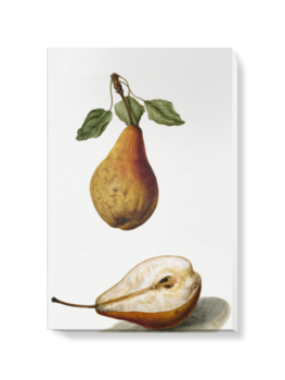 'Pears' Canvas Wall Art