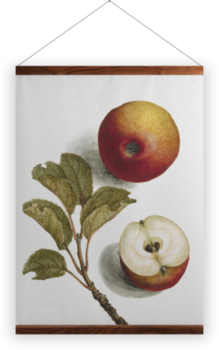 'Apples' Wall Hanging