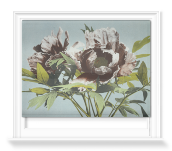 'Tree Peony' Roller Blind