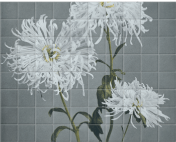 'Chrysanthemum' Ceramic Tile Mural