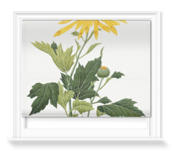 'Chrysanthemum' Roller Blind