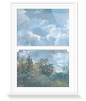 'Study of Sky and Trees' Decorative Window Film
